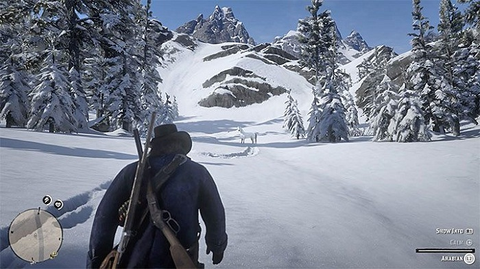 Red dead redemption II wiki guide comment attrapper cheval sauvage